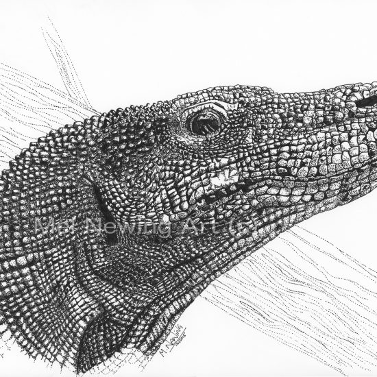 Pen drawing of a komodo dragon using pointillism