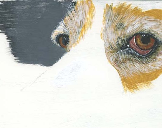 Acryclic paint dog eyes.