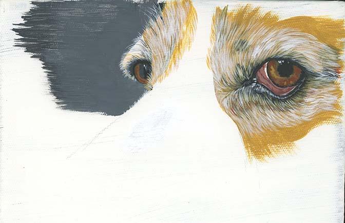 Acryclic paint dog eyes.