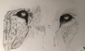 Lion's eyes with added fur detail.