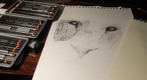 Progress with the Derwent Pencil Graphic Pencils