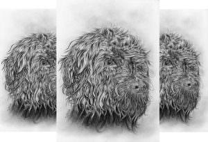 Pet portrait commission Dog in graphite pencil