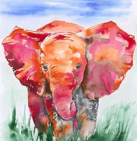 Colour ink art of Baby Elephant