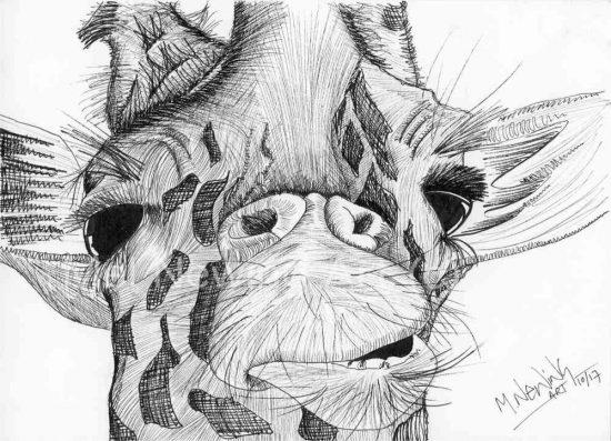 Giraffe Ink Pen Art