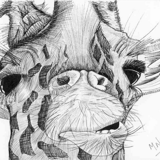 Giraffe Ink Pen Art