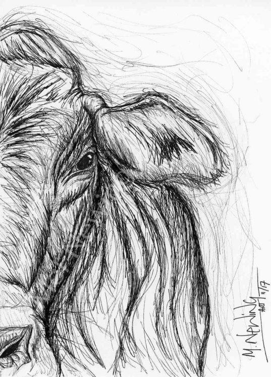 Cow ink pen art