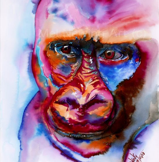 Gorilla drawn in colour Ink and Ink Pen