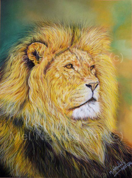 Pastel art of a male lion