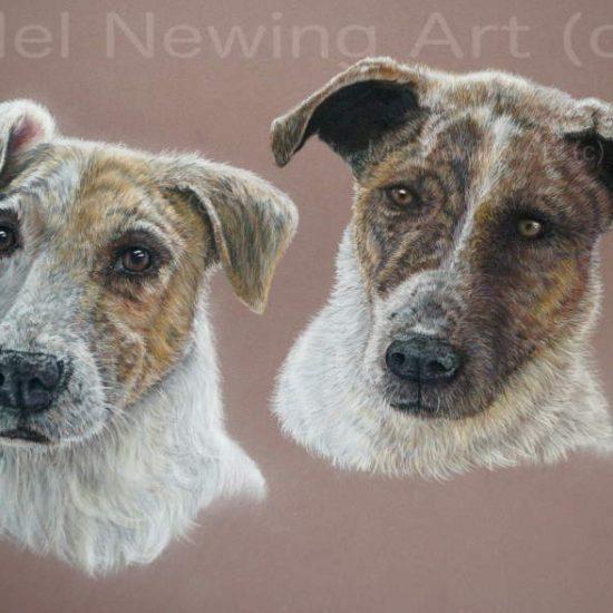 Pet Portrait Double commission