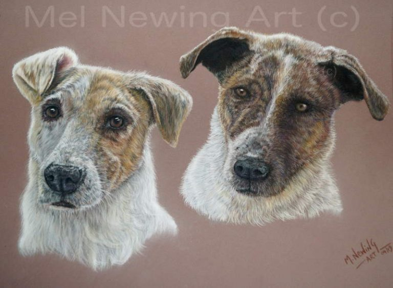 Pet Portrait Double commission